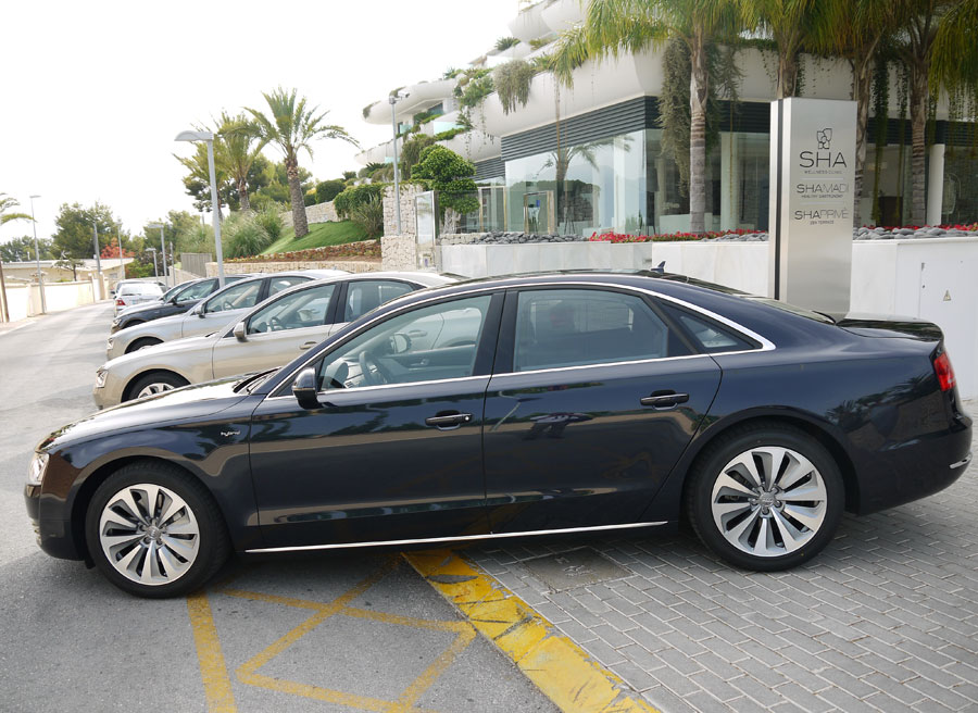 Audi Hybrid, Rubén Fidalgo