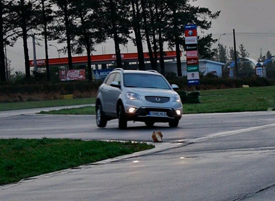 Vídeo prueba del SsangYong Korando G20D bi-fuel GLP