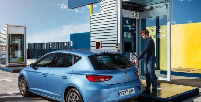 En España solo hay 39 estaciones de servicio de gas.