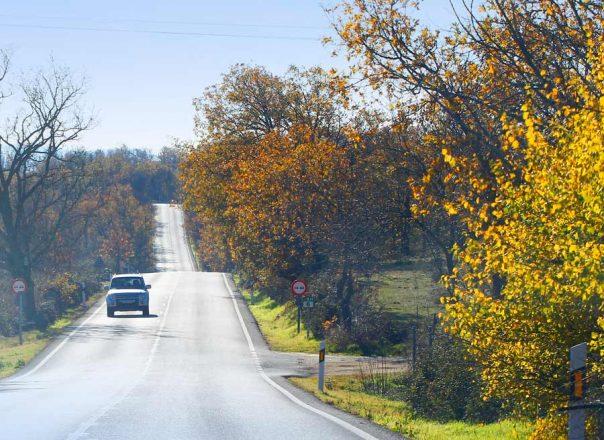 Cómo sobrevivir a la carretera convencional