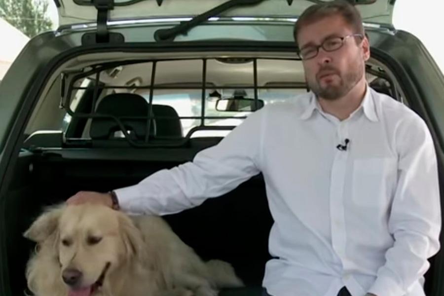 Cuál es la multa por circular indebidamente con mi mascota en el coche