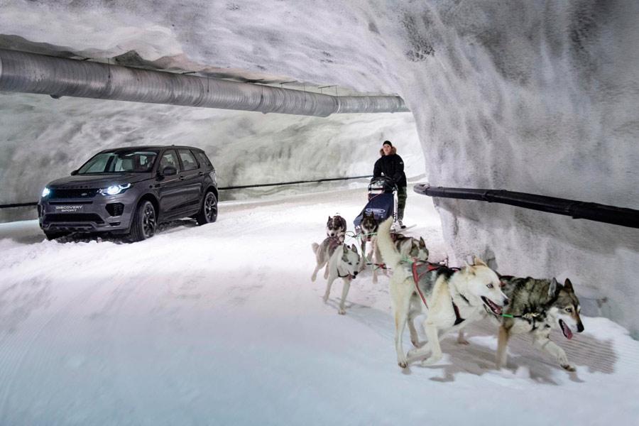 Huskies vs. Discovery Sport, ¿quién ganará el reto más invernal?