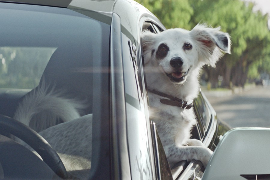 Un Audi y un perro astronauta: así anuncia la marca su tecnología