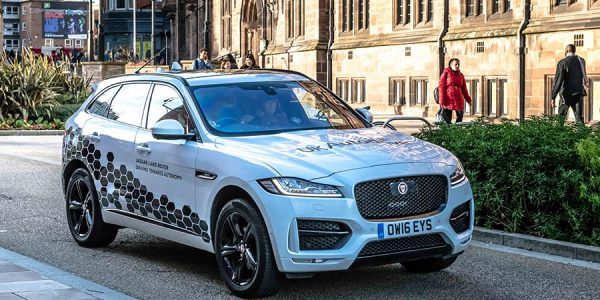 Un Jaguar anda suelto por la ciudad