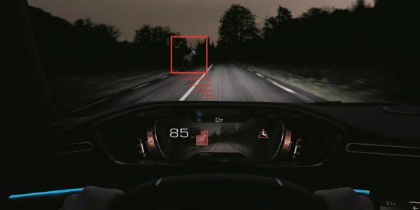 Cómo funciona la visión nocturna: evita que un jabalí destroce tu coche