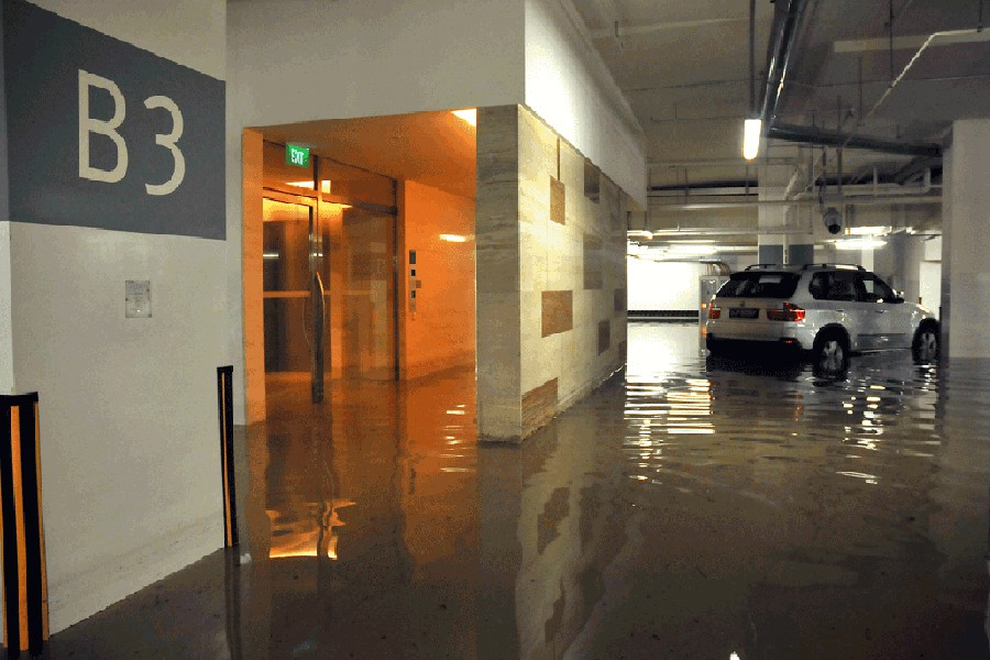 Si el vehículo está en un garaje público o privado se debe reclamar a su seguro.